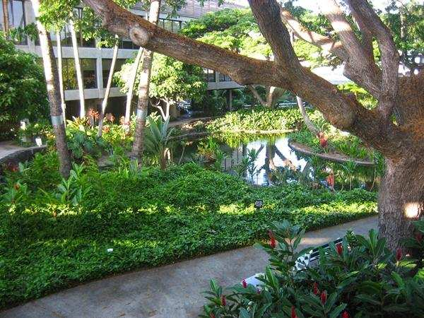 Photo of Honolulu International Airport outdoor courtyard