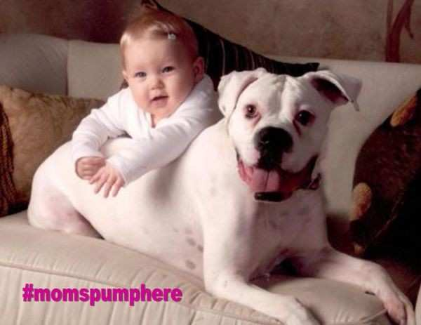 Pets and Breastfeeding Your Baby