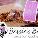 Bessies Best Lactation Cookies